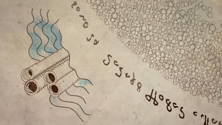 Voynich-kézirat