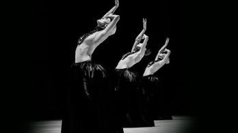 Mitől prózai a balett?