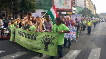 A budapesti fakivágások ellen tiltakoznak