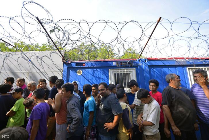 Menekültek a szerb-magyar határon kialakított táborban, Horgosnál
