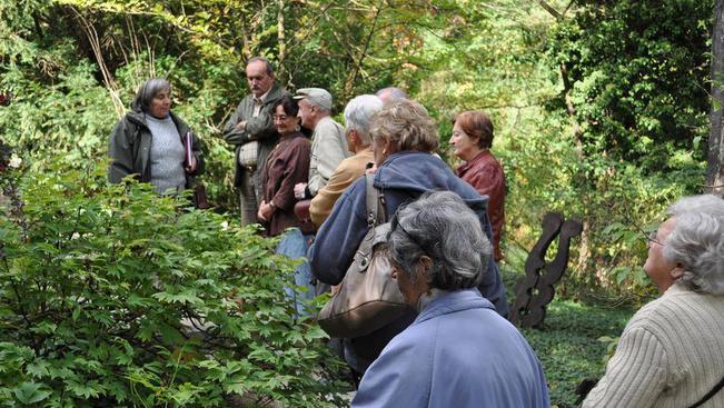 Ingyenes arborétumi séták az Idősek Világnapján