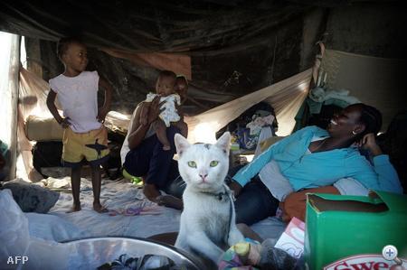 Sátorlakók egy menekülttáborban