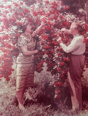 Mihályfi Ernő és felesége