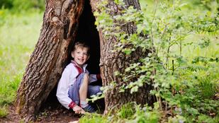 Több fa a gyerek körül=jobb jegyek a suliban