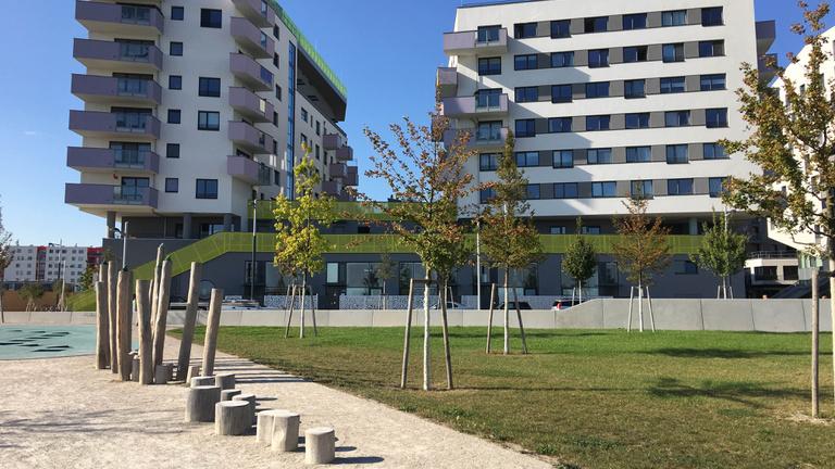 Bécs mellett épül a jövő városa