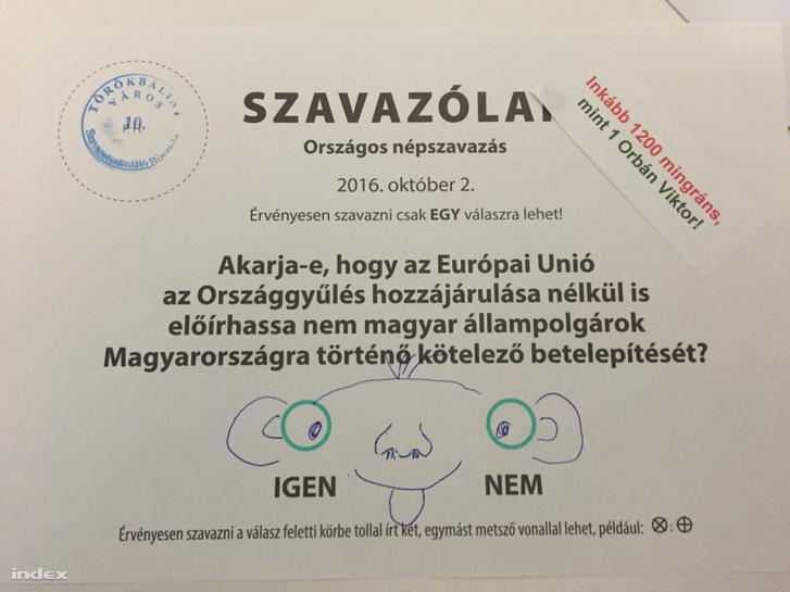IMG 2085