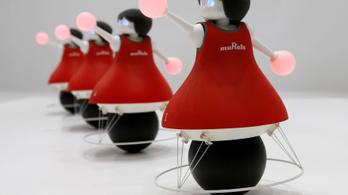 Cuki robotok készítik elő a robotapokalipszist
