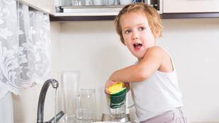 Az ön gyereke elvégzi ezeket a házimunkákat?