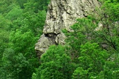 sziklas
