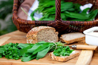 medvehagyma kenyer