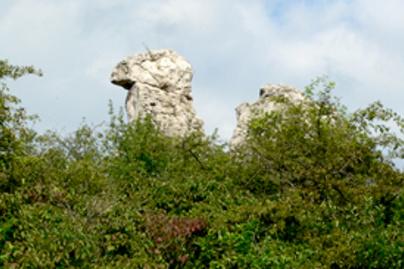teve szikla lead