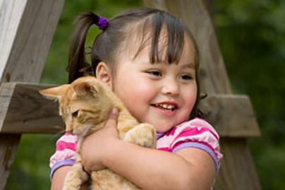 cica kislany kicsi