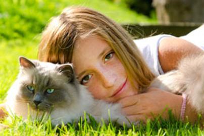 macska lany