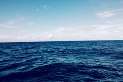 csendes ocean lead