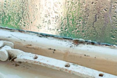 penesz-ablak-lead