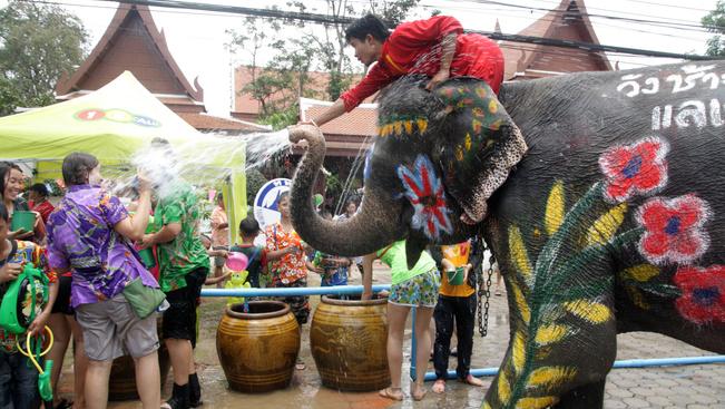 Elefántmenhely nyílt Brazíliában