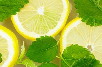 citrom menta