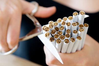 ollo cigi