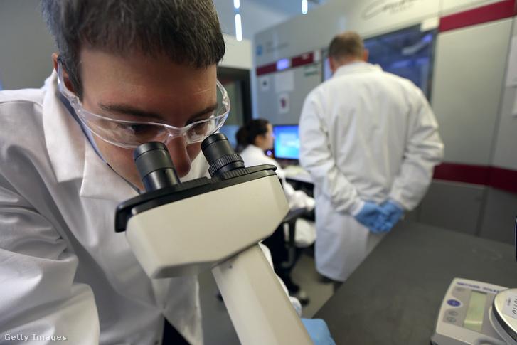 Rákkutatás a Broad Intézet egyik laboratóriumában