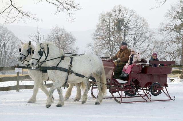 Ha igazán nagy hó lesz, akkor egy lovasszános fogathajtás is szép emlék lehet majd