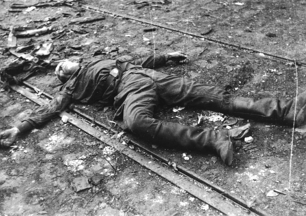 """Valószínűleg egy ávós holtteste látható az Amerikába emigrált Hofbauer Róbert révén megmaradt fényképen. A felvétel pontos helyszíne és körülményei ismeretlenek. A forradalmárok által meggyilkolt kommunisták, """"a népi demokráciához hű személyek"""" belügyi névsora körülbelül kétszázhatvan nevet tartalmazott. Mint Tabajdi Gábor írja: A rezsim mártírjainak száma lényegében megegyezett a megtorlás során kivégzettek számával. A """"szemet szemért"""" ősi elvének alkalmazására Kádár János is utalt 1985-ben, a pártvezető így idézte fel a megtorlás folyamatát: """"Amikor a halálos ítéletek száma elérte az ellenforradalmi eseményekben ártatlanul elhunytak                         számát, arra kértem az elvtársakat, hogy álljanak le."""""""