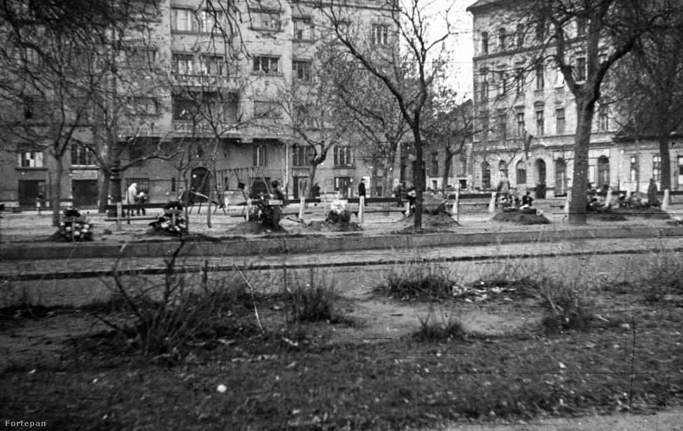 A Ferencvárosban, egy másik, harcokkal és halottakkal teli forradalmi helyszínen. A Ferenc tér játszóterének szélén sírok sorjáznak, szemben a Bokréta utca torkolata. A közeli klinikák udvarain is temettek a forradalom napjaiban.