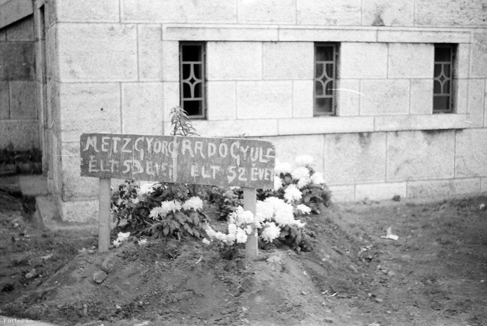 """""""Kijárási tilalom volt, valószínűleg már november 4. után. A rádió bemondta, hogy lehet kenyeret kapni, le lehet menni az utcára. Ahogy a szomszéddal kiléptek a kapun, azonnal géppisztolysorozat találta őket, feltehetően egy szovjet járőr fegyveréből. Rögtön meghaltak. Fogalmunk sem volt róla, hogy itt, a híd lábánál hantolták el őket"""" - mondta el Mink András az Indexnek, ami legalábbis a közvetlen körülményekről tudható.                         Klasszikus """"vétlen szemlélődő"""" tragédia volt az övék, sok száz hasonló sorsú emberéhez hasonlóan. Radó Gyula egyszerű köztisztviselő volt, özvegyemberként nevelte két lányát, akiktől apjuk azzal búcsúzott, hogy hoz nekik kenyeret. Soha nem tért vissza: a Boráros tér sarkán lévő ház rossz helyen volt és ők a legrosszabbkor léptek ki rajta - túl közel két forró helyszínhez, a Corvin közhöz és a Csepel-szigethez, ahol még november 9-én is tartottak a harcok.""""Dermesztő volt, amikor megláttuk a fényképet. Az ideiglenes sír emléke nem maradt meg a családban; édesanyámék fiatal lányként érthető módon sokkos állapotba kerültek apjuk halála után. Néhány hét múlva mohácsi rokonok szekeret küldtek értük, én is ott születtem. Nagyapám végső nyughelye Farkasréten volt."""""""