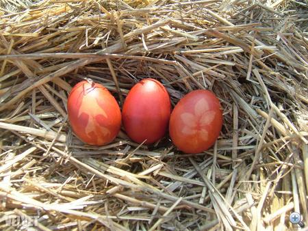 hagymás tojás