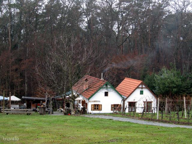 Egy tipikus burgenlandi Buschenschank