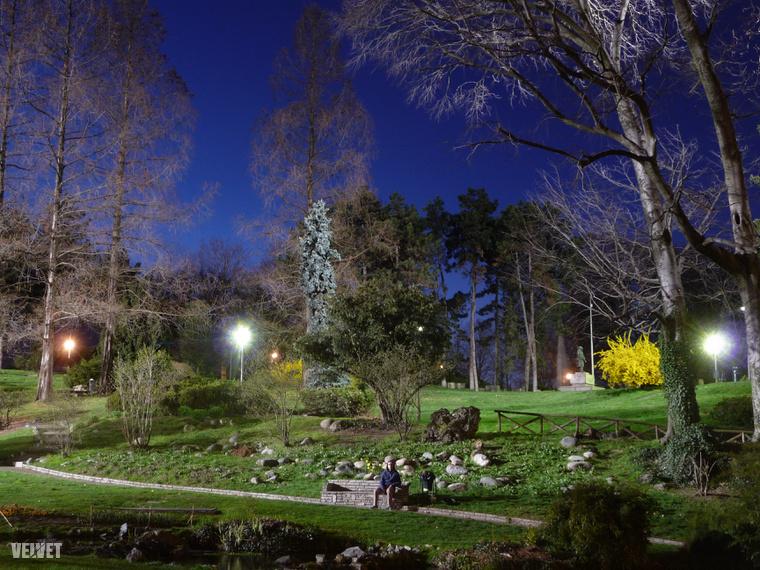 A Parco del Valentino nevű park Torinóban, 2010-ben. Ekkor még nem nagyon voltak benne szürkemókusok.