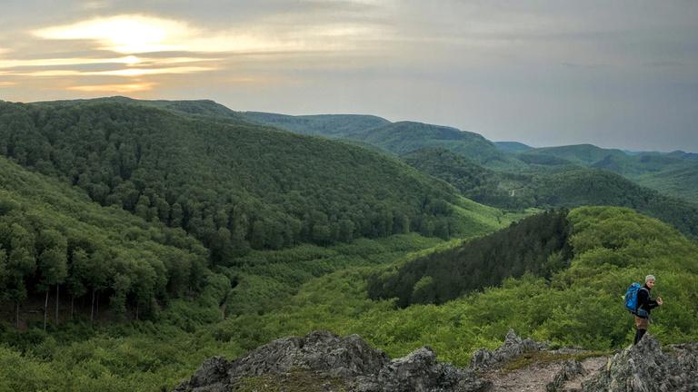 A hegy, amely csúcsára aranyszemcséken vezet az út