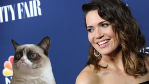 Mandy Moore macskája azért sírt éjszakánként, mert utálta a nevét