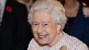 Ijesztően nagy festmény készült Erzsébet királynőről