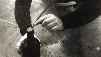 18. századi hajóroncsból került elő a világ legrégebbi söre, most kiderült, milyen