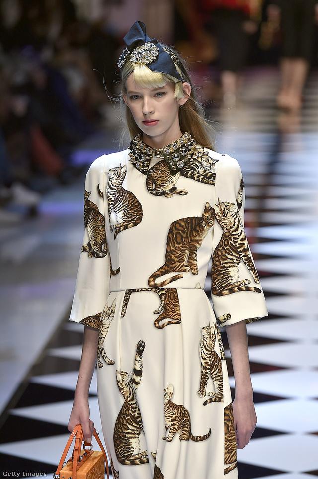 Macskás ruha a Dolce & Gabbana 2016-os őszi-téli kollekciójában.