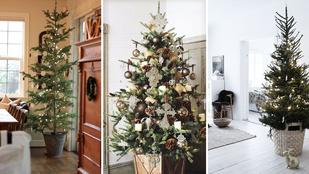 5 tipp, mivel válthatja ki a bolti karácsonyfatalpat