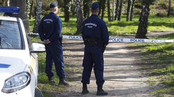 A legtöbb gyilkosságot Budapesten és Borsodban követik el