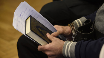 A Fidesz örül a 10 éves büntetésnek
