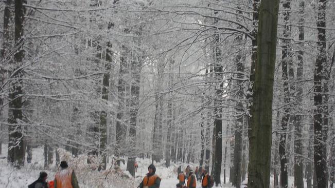 Téli túra előtt nézzen rá a pilisi kilátók webkameráira is!