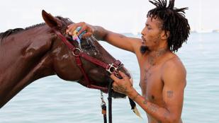 Most pedig meghívjuk önt egy lófürdetésre Barbadosra
