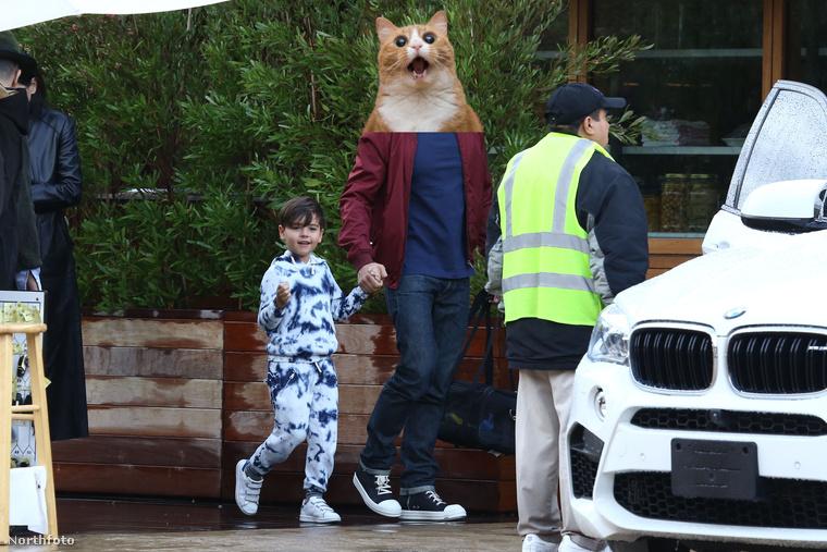 Ott a cica, akiről eláruljuk, hogy egy híres úr