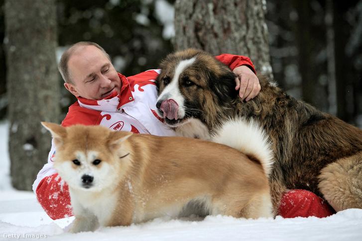 Az orosz vezető szereti a kutyákat