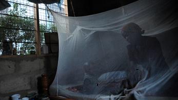 Félresiklott a malária elleni világprogram