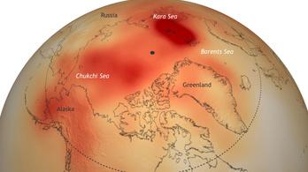 Nagy a baj az Északi-sarkon
