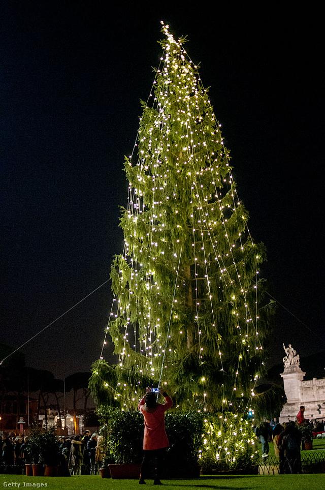 A közutálatnak örvendő fa a Piazza Venezián