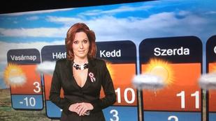 Hírek kakaó mellé: Gaál Noémit meglepte, hogy kirúgták a TV2-től