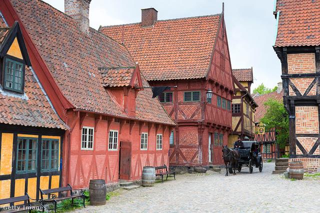 Aarhus skanzenje