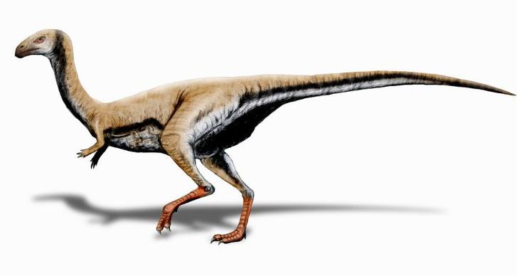 Limusaurus BW