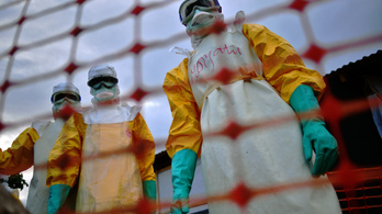 Az orvostudomány legyőzte az ebolát