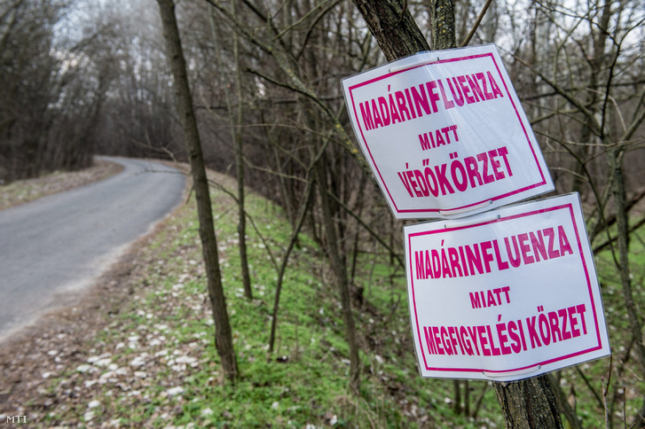 Madárinfluenza-fertõzés veszélyére figyelmeztetõ tábla egy állattartó telep közelében Kelebia határában